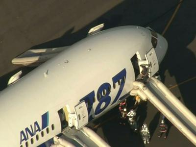 Europe joins U.S., grounds Boeing 787s