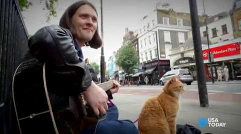 Former heroin addict credits cat for saving his life
