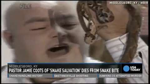'Snake Salvation' pastor dies from snake bite