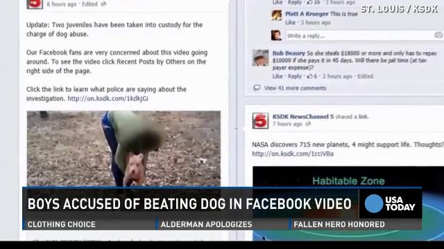 Dog abuse video went viral, dog saved