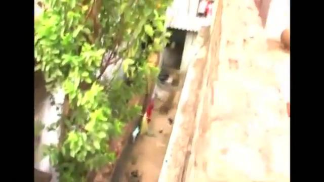 Leopard on the run creates panic in western Indian village