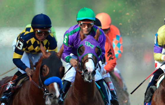 Breaking down the horse's convincing victory at Churchill Downs and chances to win the Preakness and Belmont.