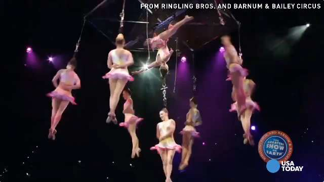 9 seriously injured in circus accident