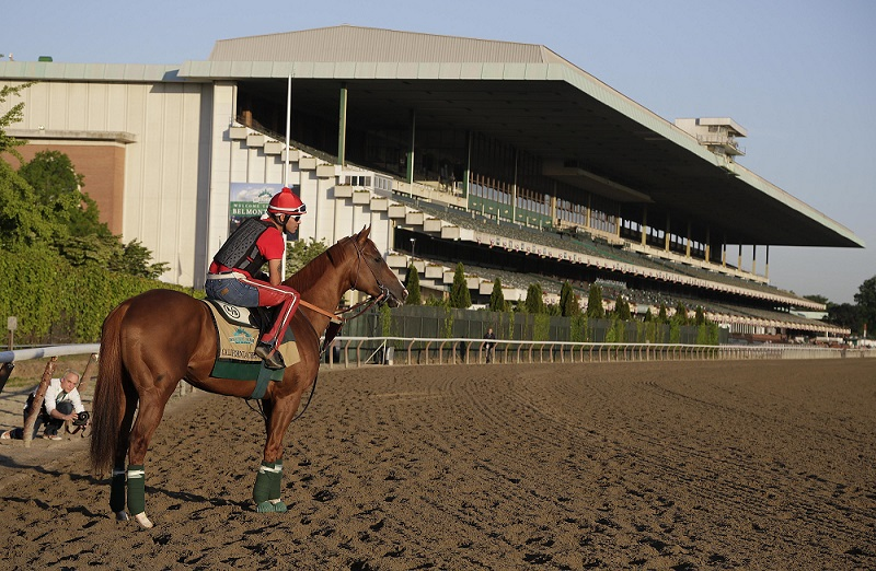 The California-bred horse faces the challenge of the Belmont Stakes in his attempt to win be the first Triple Crown winner since 1978.