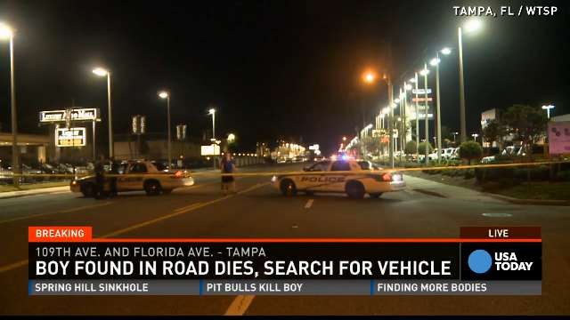 Florida: 4-year-old found in road dies, possibly thrown from car