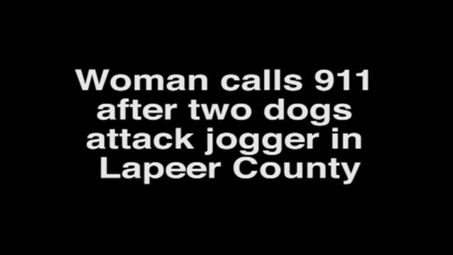 Hear 911 call: Witness tried to stop fatal attack by shooting at dogs