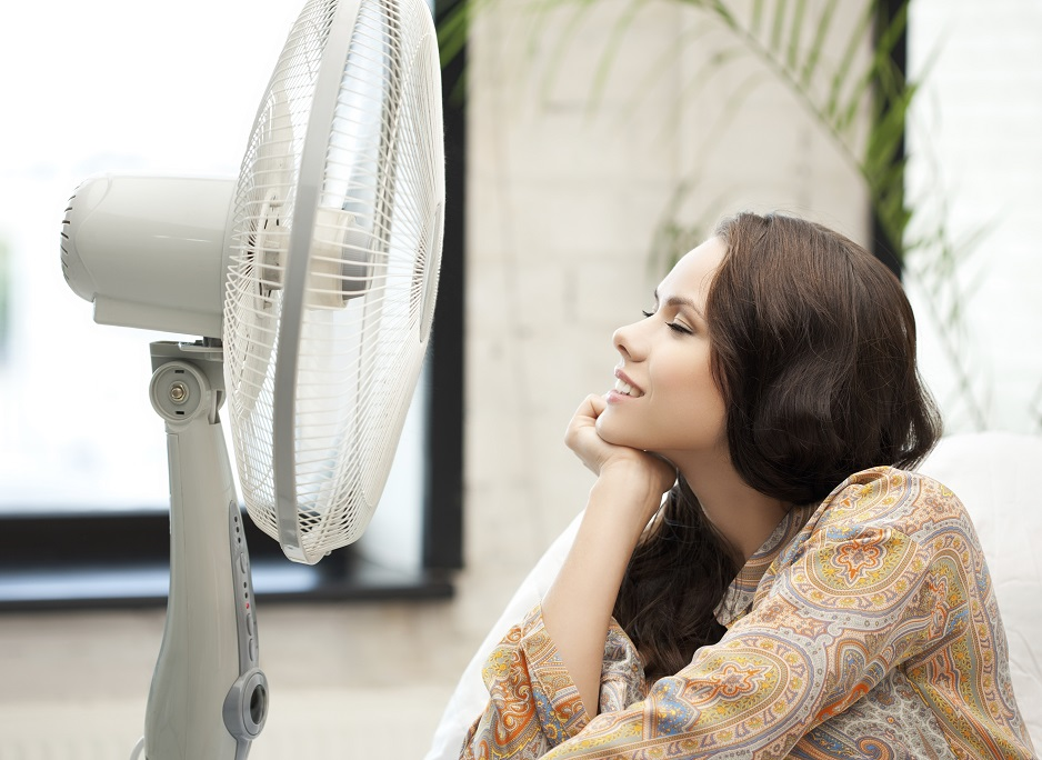 Save of the Day: Vornado fan lowers home energy bills!