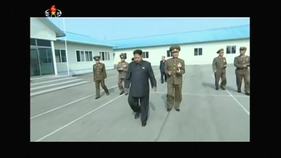 N. Korea acknowledges leader Kim Jong Un has health problems