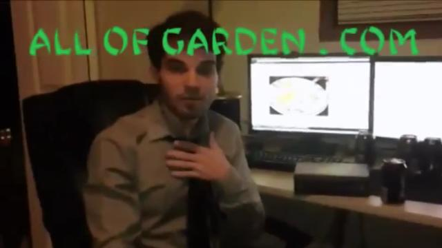 Man Blogs about his 49-Day Olive Garden only diet