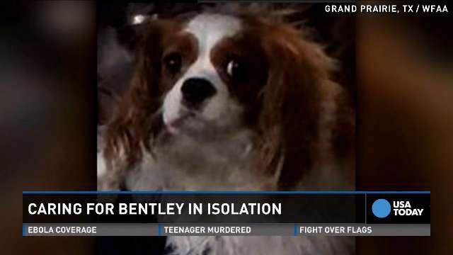Go behind the scenes with Bentley, the dog of Ebola