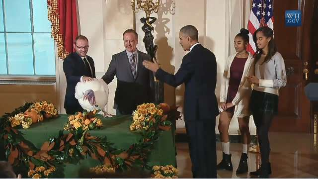 Obama girls don't want to pet pardoned turkey