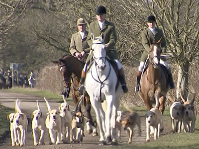 fox hunting barbaric Fox hunting: good or bad the current ban on fox hunting has been very however there are people who believe fox hunting is an evil cruel barbaric pastime.