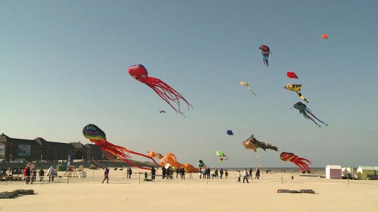 Kites soar over French beach during festival
