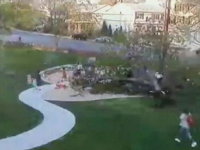 Watch massive tree fall on kids playing in park