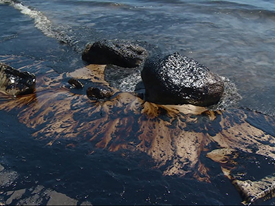 Oil Spilled on 4 miles of California coastline