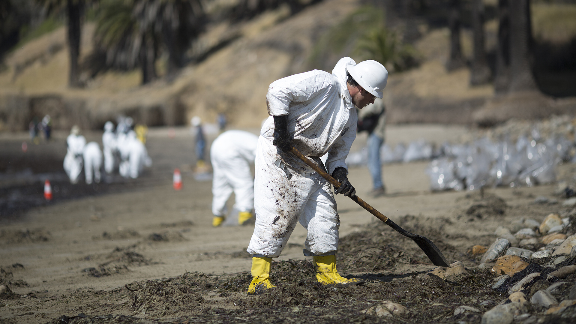 Cause Of Oil Spill Probed As Cleanup Of Calif Coast Continues