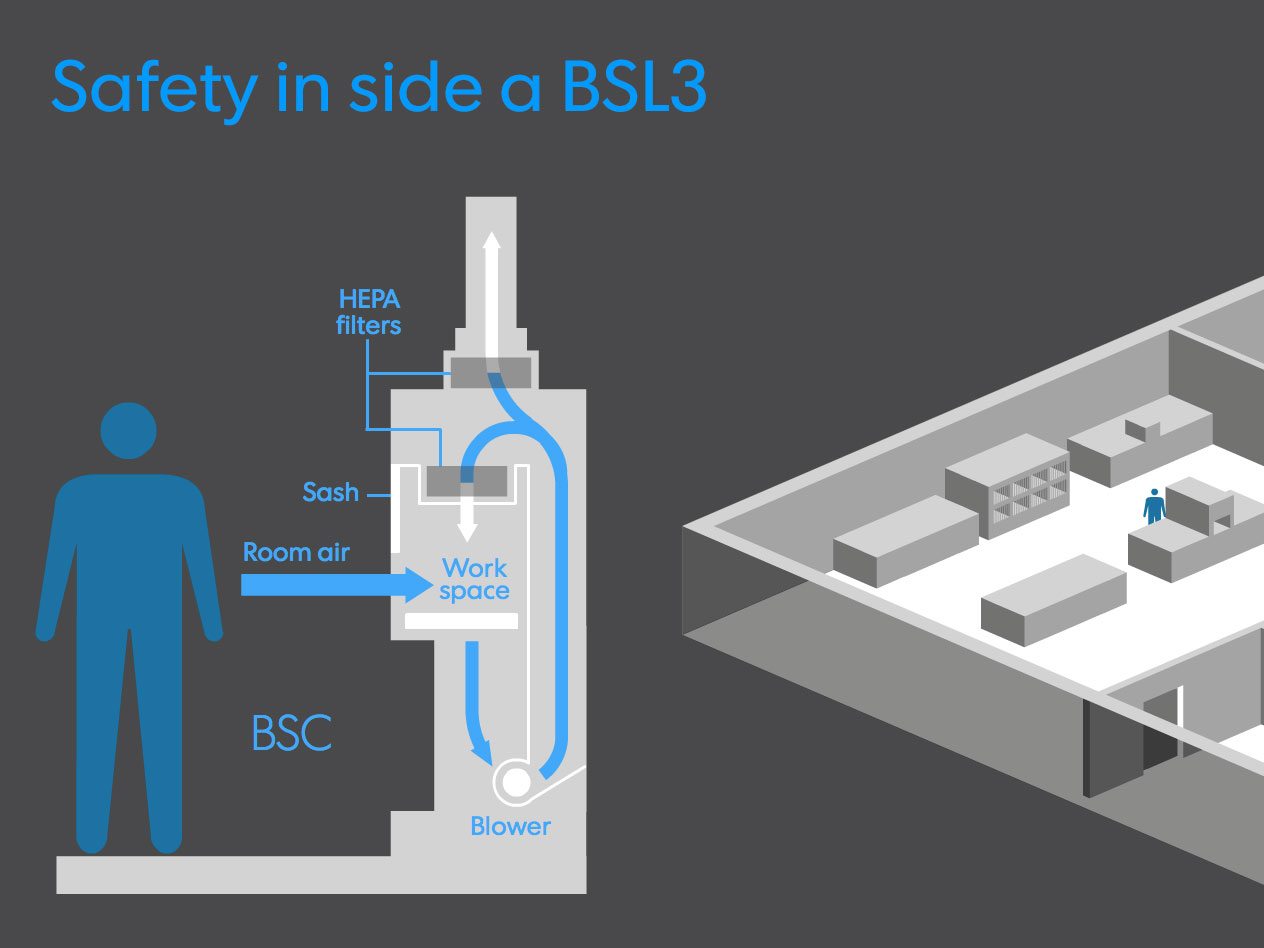A look at security in America's biolabs