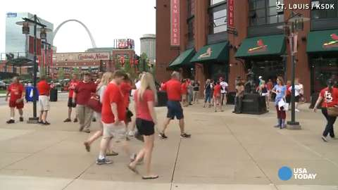 FBI launches investigation into Cardinals
