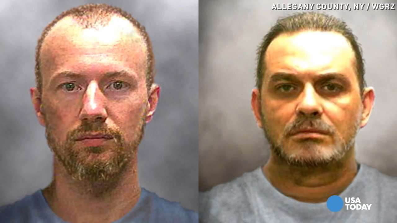 Police: NY prison escapees' DNA found at cabin