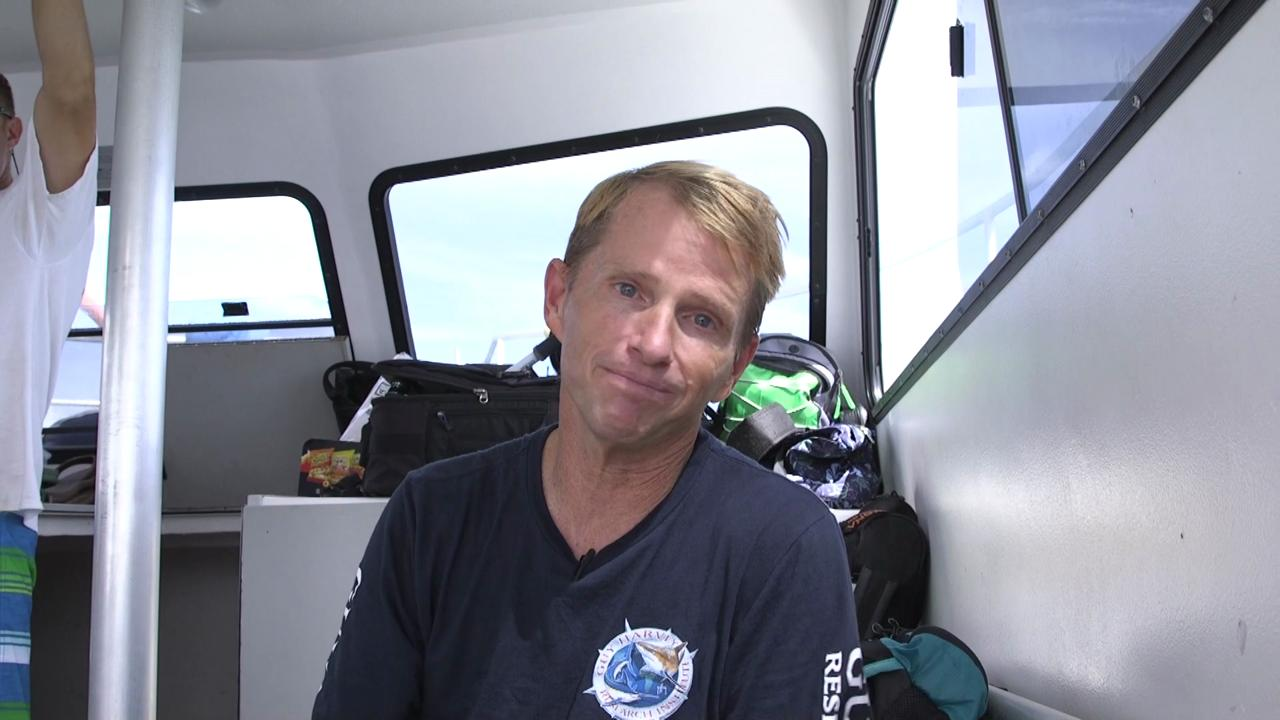 A shark researcher talks about the recent attacks that have happened at popular beach destinations and says you always have to be aware when you're in the ocean, but the likelihood of an attack is very rare.