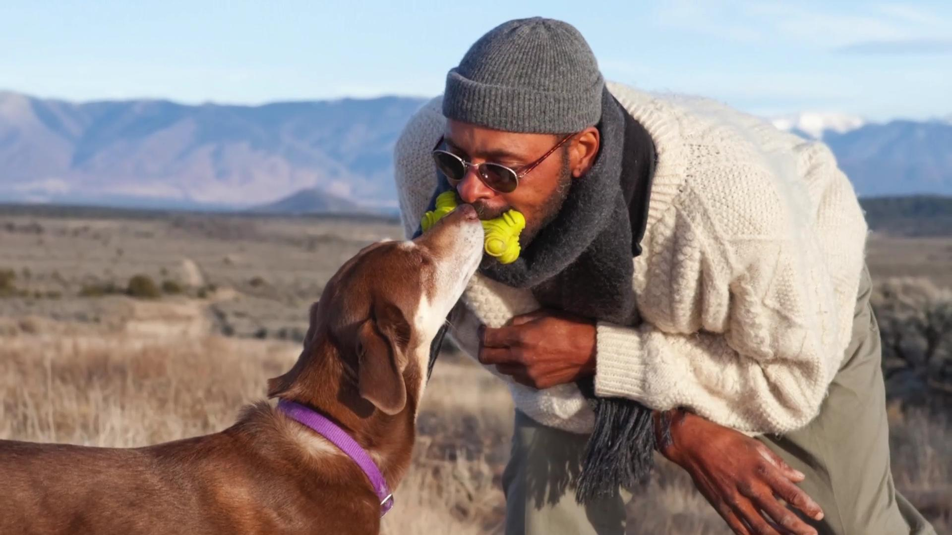 People prefer kissing pets over significant others study says