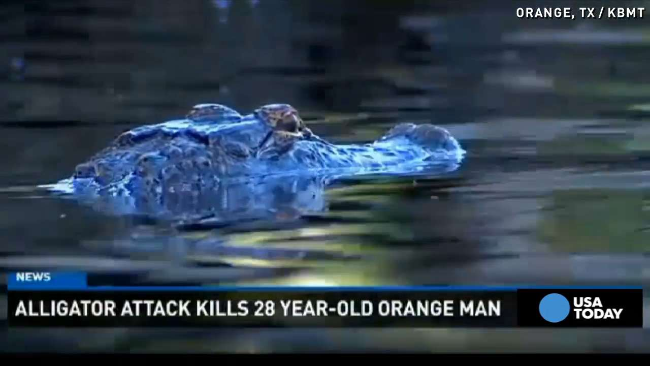 Alligator kills man taking late-night swim in Texas
