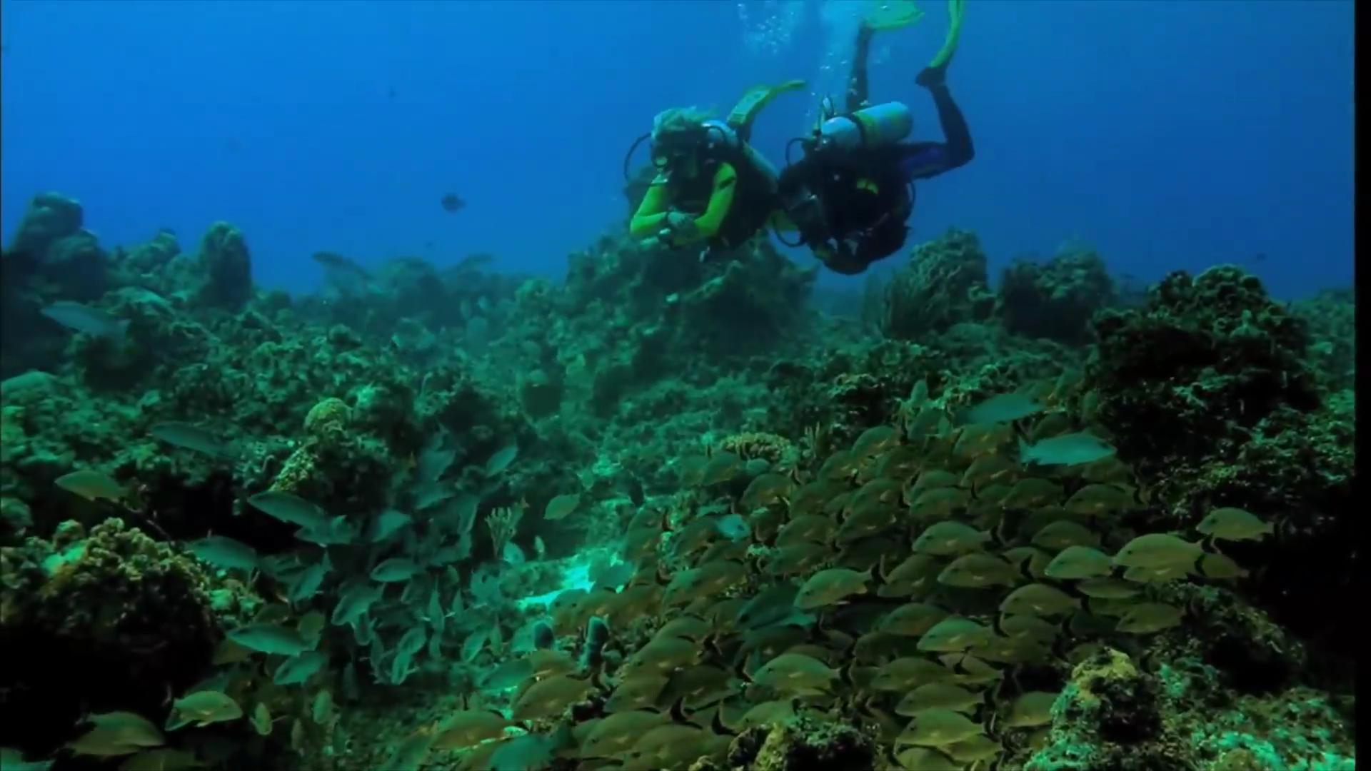 The best places for inexpensive SCUBA diving vacations