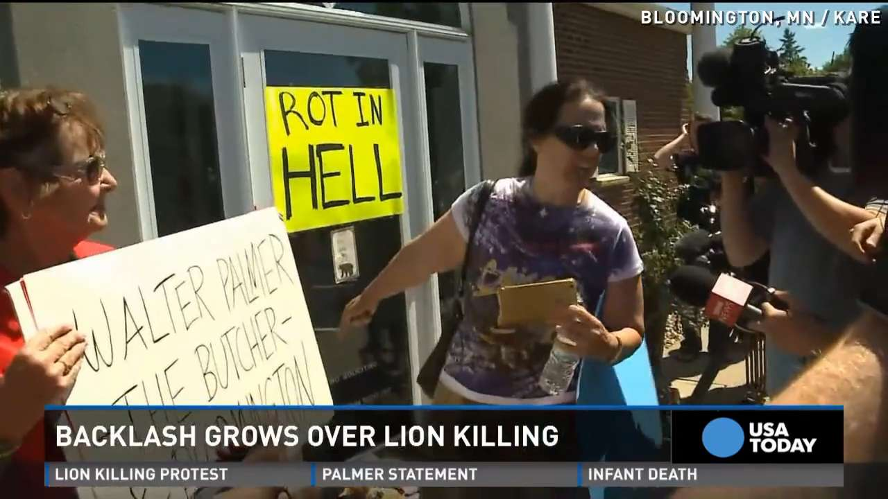 Killing of Cecil the lion sparks big protests, debate