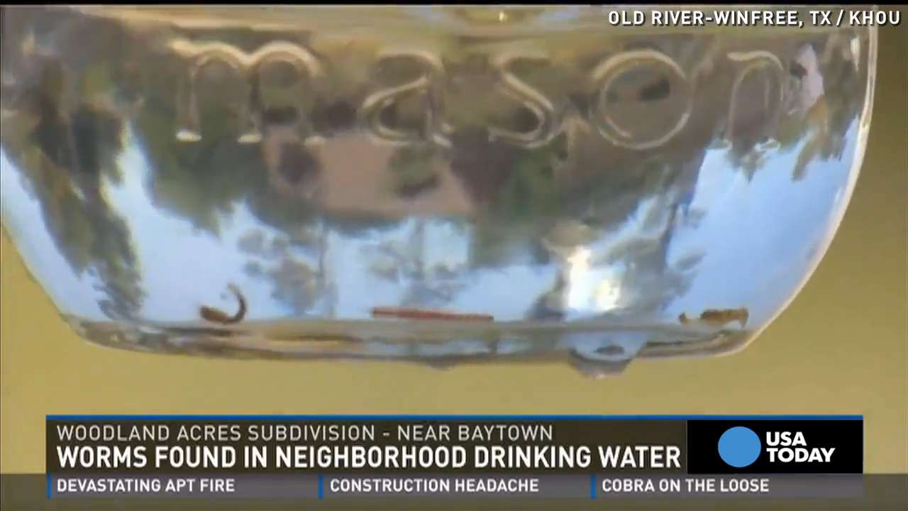 Gross! Worms flow from town's tap water