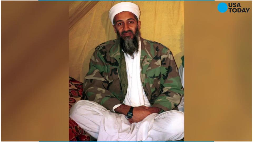 Members of Osama Bin Laden's family were among the victims in the crash of a private jet in Britain.