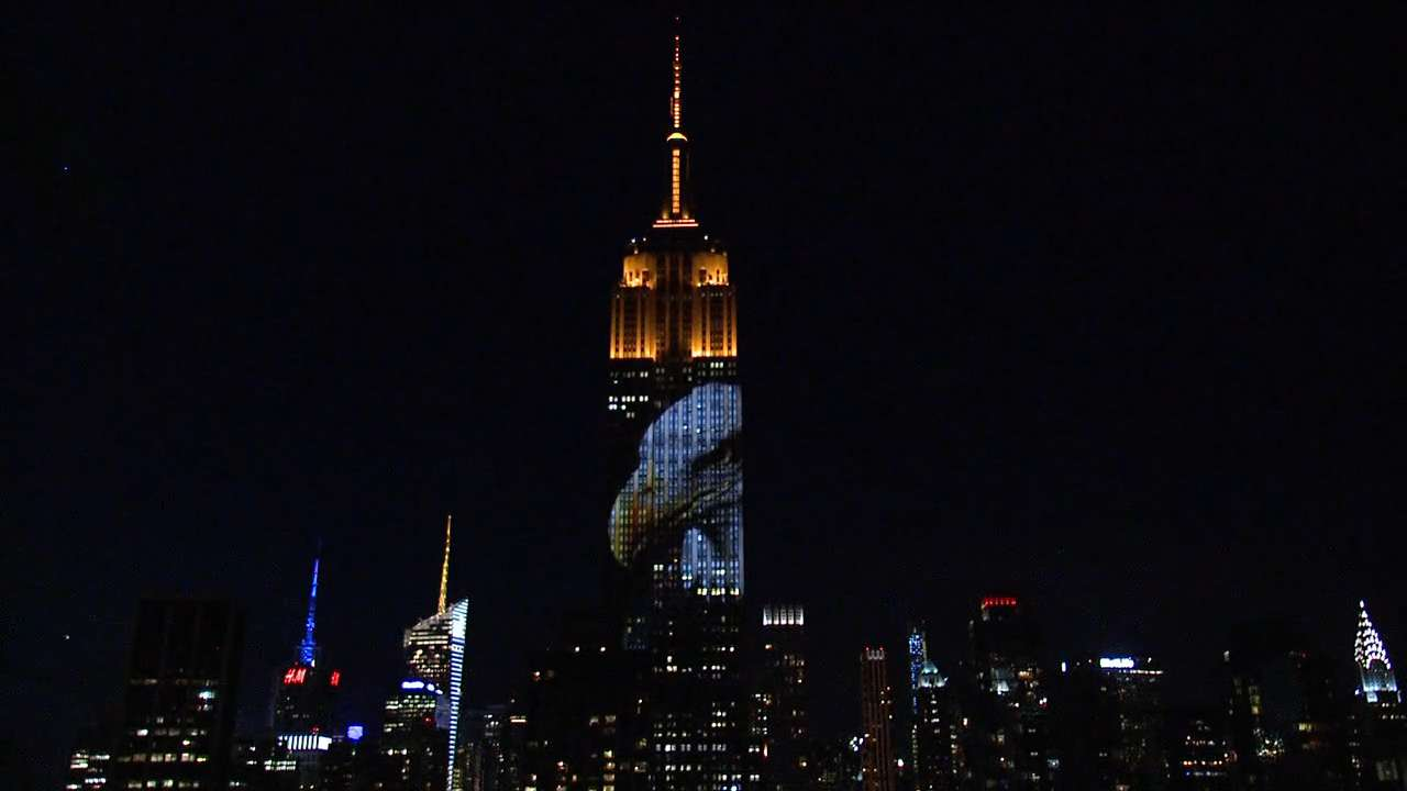 Endangered animals light up Empire State Building