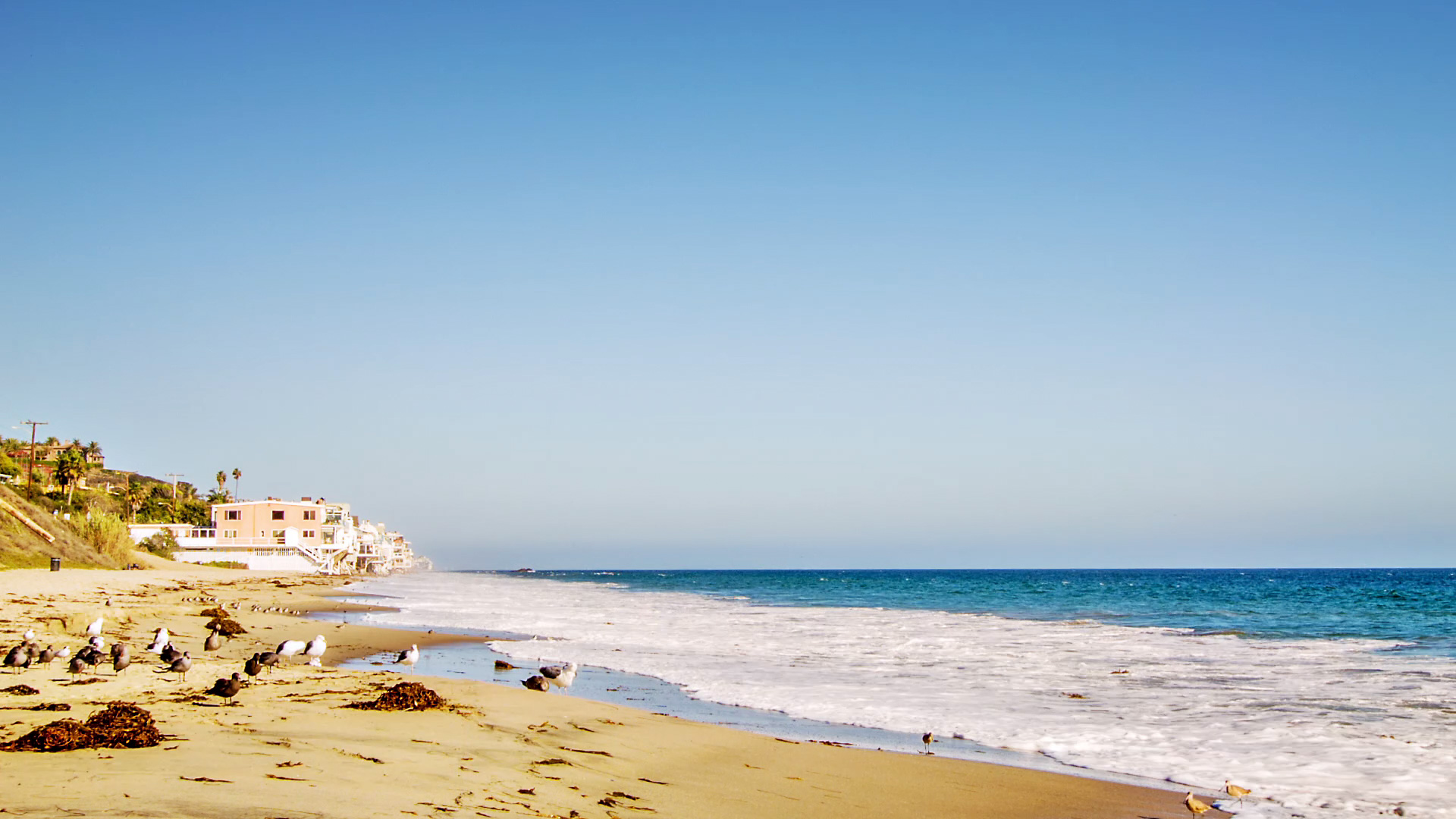 Southern California is a beachgoer's paradise. But which beaches top our list?