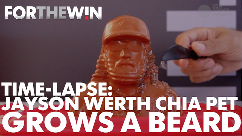 Time lapse: Jayson Werth chia pet grows gnarly beard
