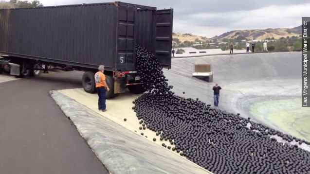 Los Angeles throws 96M balls at California's drought problem