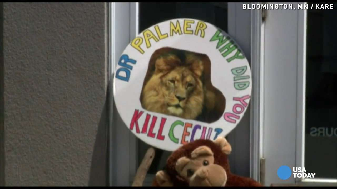 Cecil the lion killer's dentist office reopens