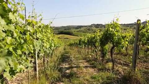 Captain and Clark explore Italy's famous food region from Siena to farms on the countryside.