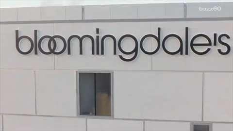 picture about Bloomingdales Printable Coupons named Bloomingdales loyalist card : Chritmas evening meal suggestions