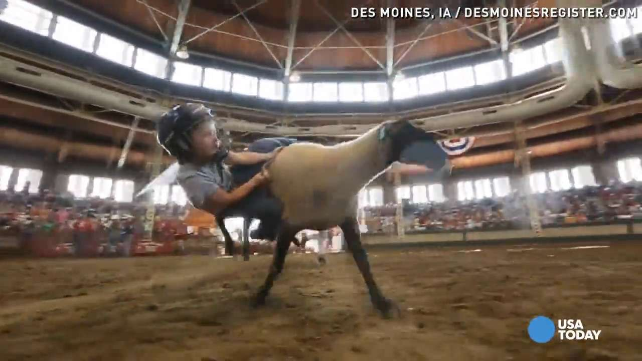 Kids hold on for dear life during mutton busting contest