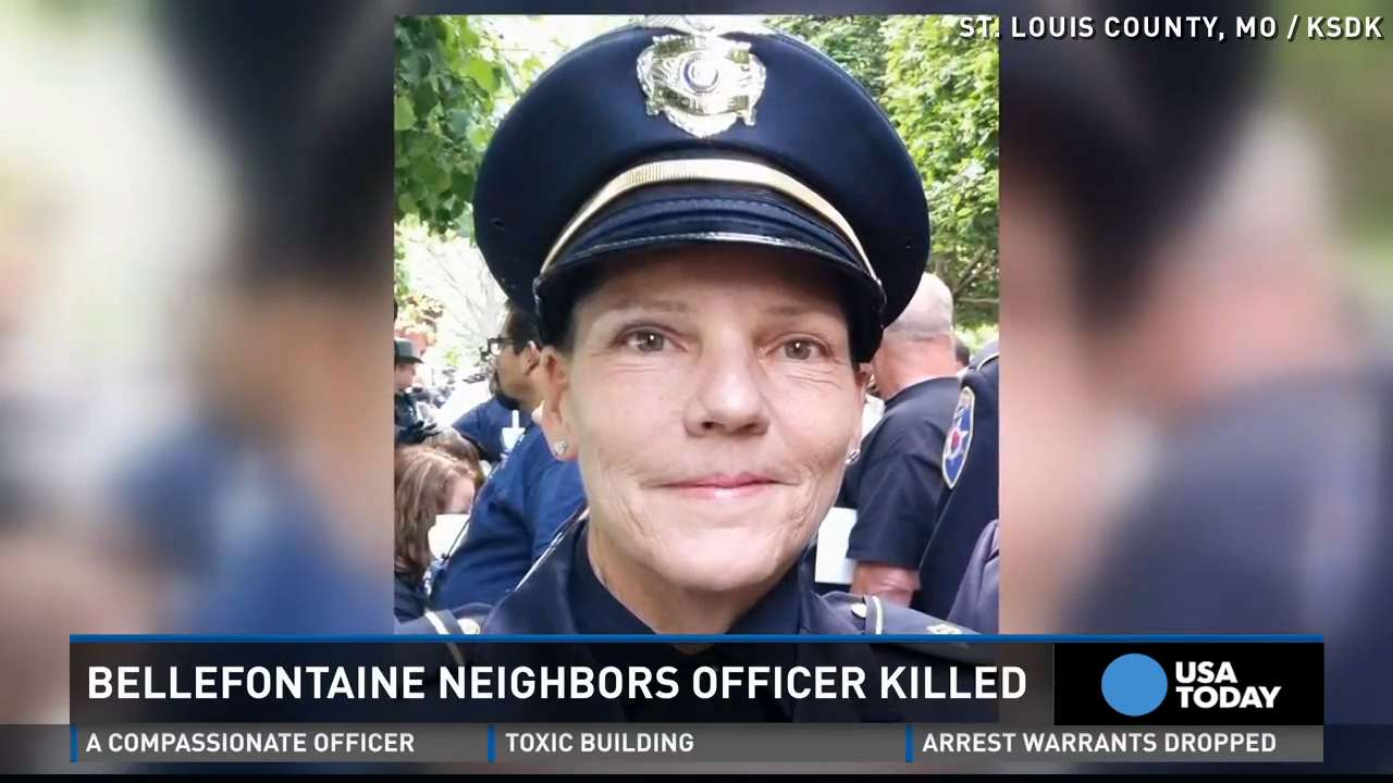 Officer hit and killed by car while helping driver