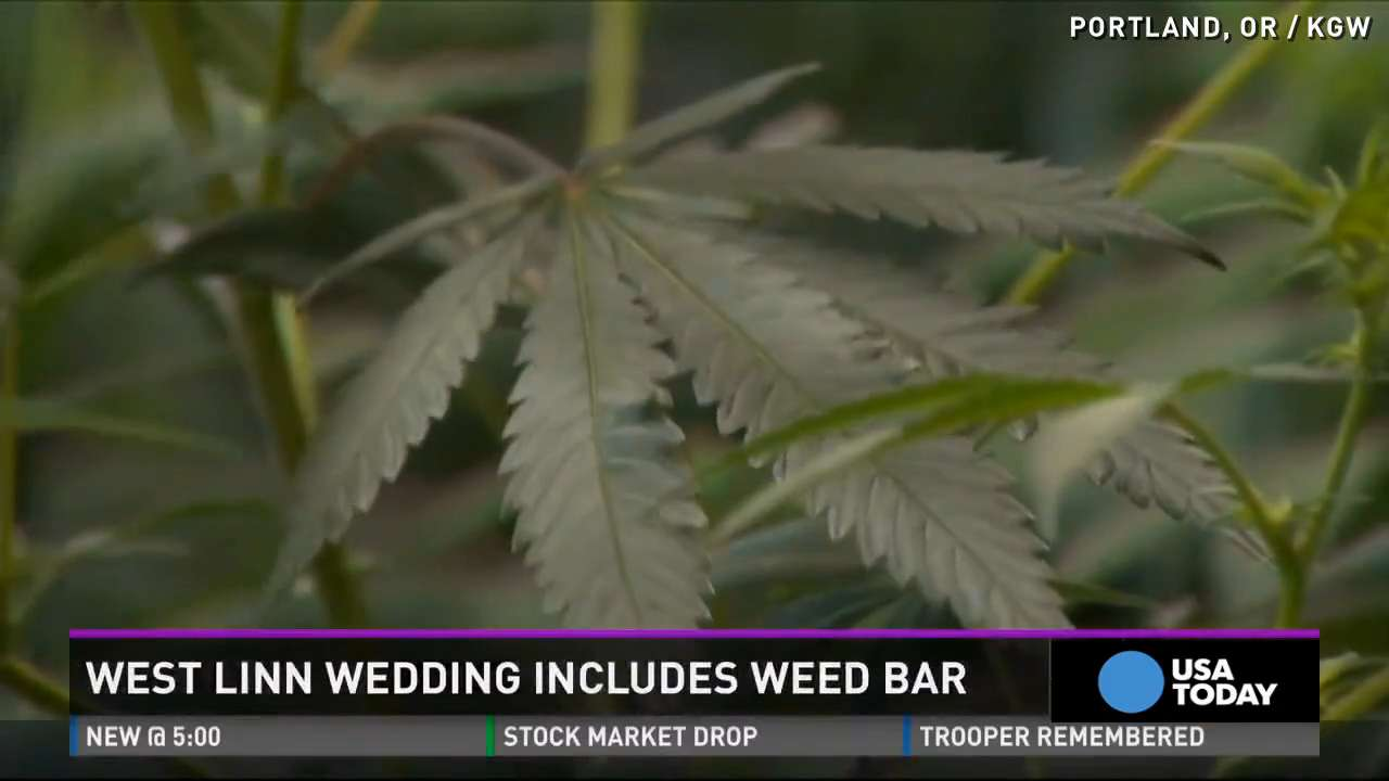 Newlyweds welcome wedding guests with weed tent