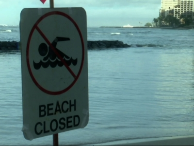 Famous Hawaii beach closed due to sewage