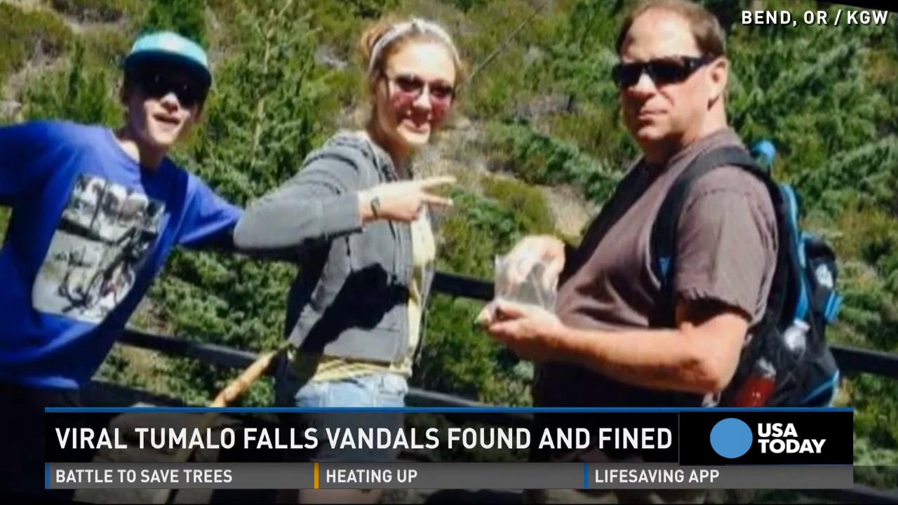 Family fined after hiker's viral post exposing vandalism