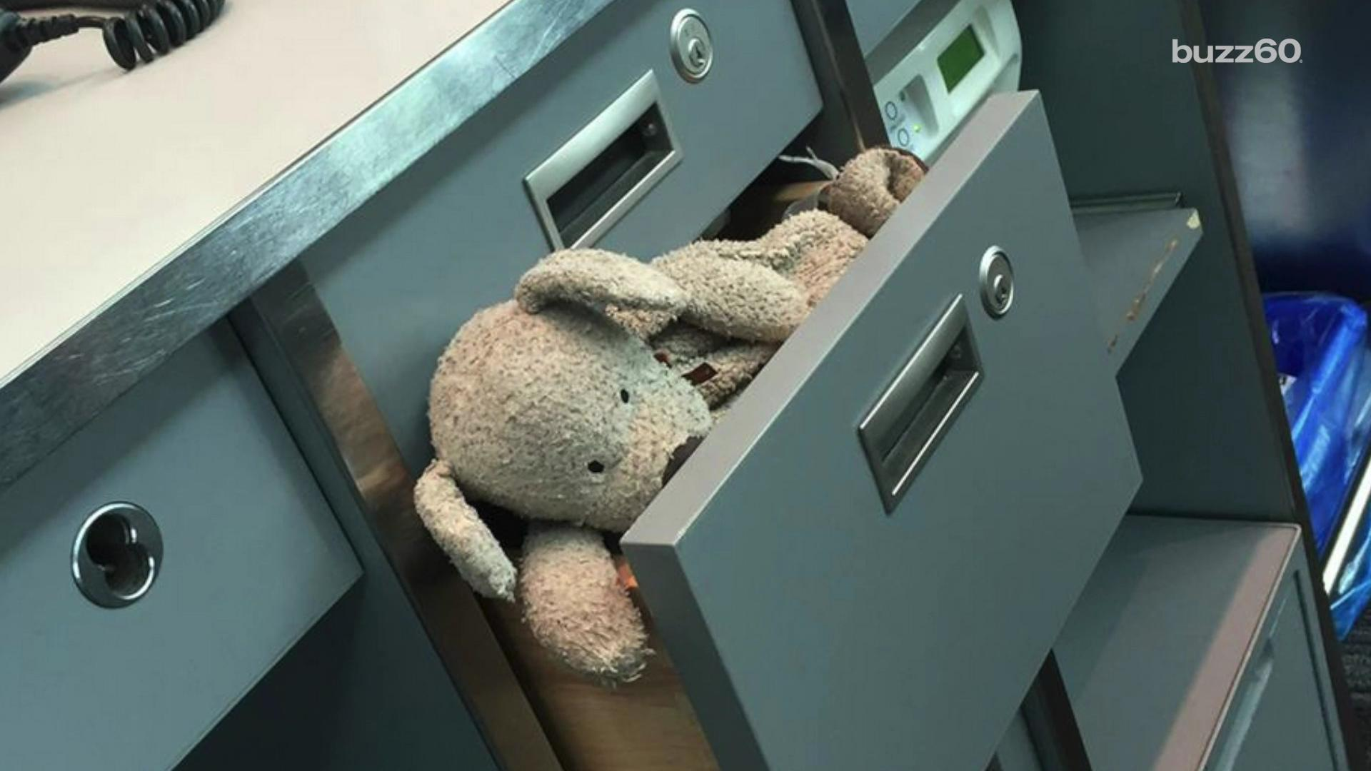 Toronto airport employees take lost stuffed animal on an adventure