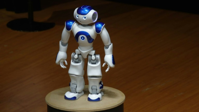 France launches Japan joint innovation year with robots