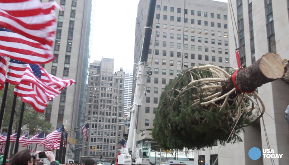 A 78-foot tall Christmas tree was lifted into place at Rockefeller Center on Friday, signaling the start of the holiday season in New York City.