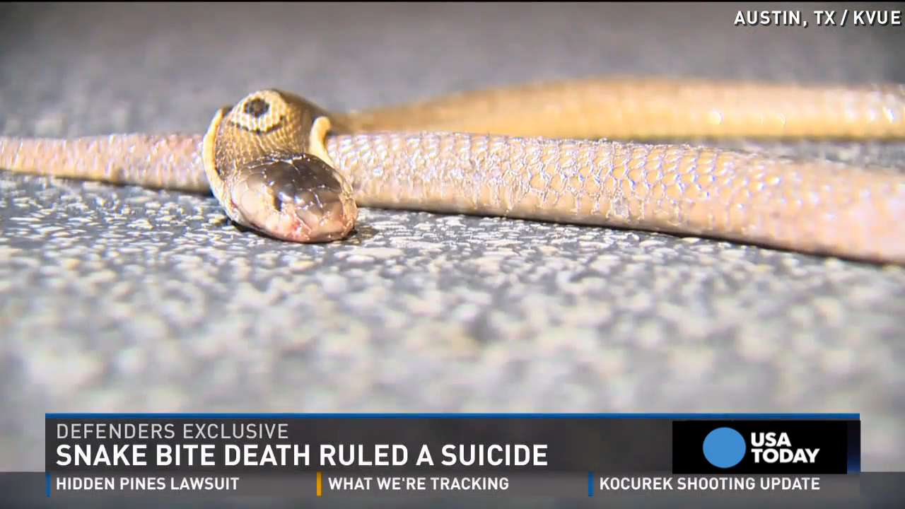 Teen commits suicide by 'multiple cobra bites'
