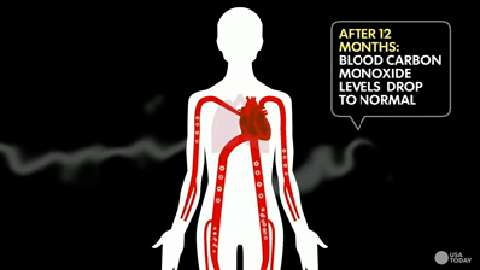 What happens when smokers quit?