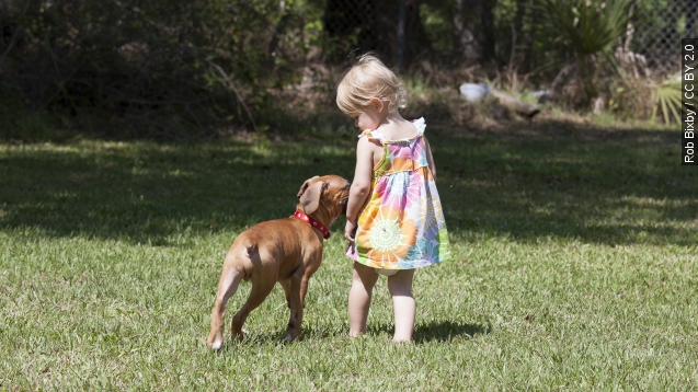 Having a pet dog might help prevent anxiety disorders in children