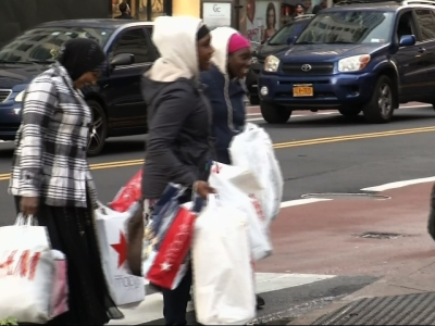 Holiday Shoppers Aim for Black Friday Deals