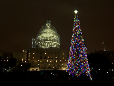 'Moment of Silence' at DC Tree Lighting